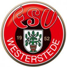 img-vfl-stenum-wintercup-teilnehmer-jsg-westerstede