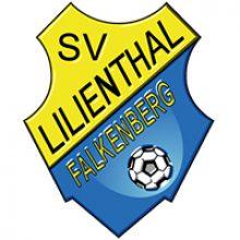 img-vfl-stenum-wintercup-teilnehmer-sv-lilienthal-falkenberg