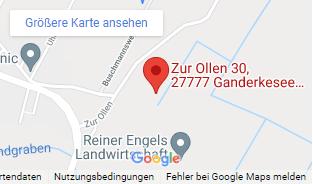 img google maps sporthalle altengraben v2