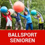 img vfl stenum beitragsbild ballsport senioren