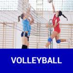 img vfl stenum beitragsbild volleyball