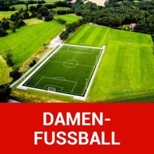 img vfl stenum fussball damenfussball